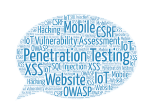 Cyber Security Vulnerability Assessment And Penetration