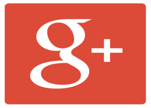 Google Plus Class Action Settlement